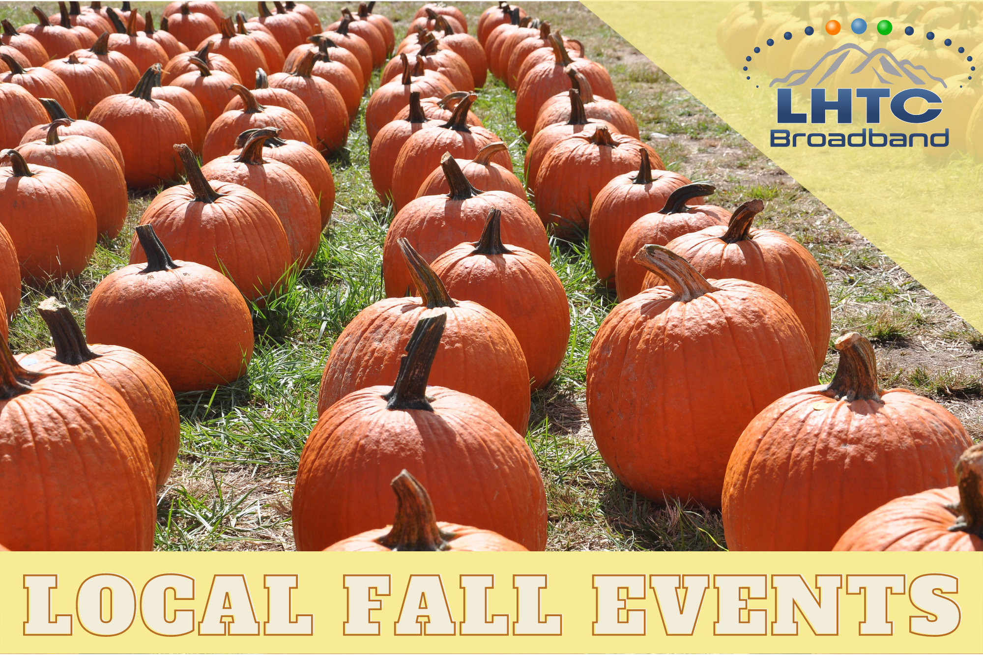 Fall Into These Local Events and Festivals